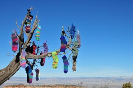 tree socks
